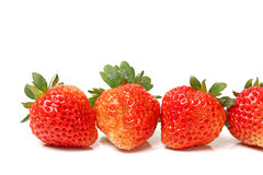 Beautiful strawberries Stock Photos