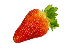 Beautiful strawberry isolated against white background Royalty Free Stock Images