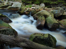 Beautiful stream. Stream in the forest surrounded by stones and logs stock photo