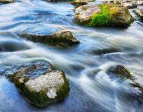 Current spring river. Beautiful stream. current spring river Royalty Free Stock Images