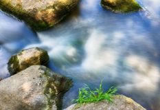 Current spring river. Beautiful stream. current spring river Stock Photography