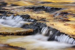 Beautiful stream flowing in late afternoon sun Royalty Free Stock Photos