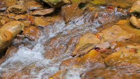 Beautiful Stream Flowing In Mountains stock video footage