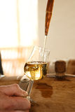 Beautiful stream into a glass of whiskey Royalty Free Stock Photo