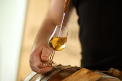 Beautiful stream into a glass of Whiskey Stock Photography