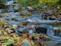 Beautiful Stream In Autumn Royalty Free Stock Photo