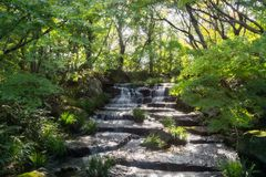 Beautiful Stream in a Japanese Garden in Himeji, Japan. Light shining through the canopy over a small stream falling over stepped terraces at Koko-en Garden in royalty free stock photography
