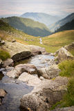 Beautiful stream in the mountains of Romania, Carpathians.  royalty free stock photography