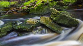 Beautiful stream in the mountains Royalty Free Stock Photo