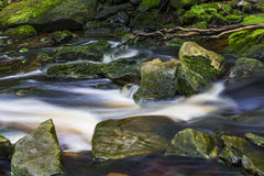 Beautiful stream in the mountains Royalty Free Stock Image