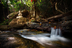 Beautiful stream small waterfall in Wat Palad, Chiang Mai, thail Royalty Free Stock Images