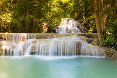 Beautiful stream waterfall in deep forest Stock Images