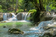 Beautiful stream waterfall run on the rocks in the jungle. Green forest. Scenic water fall in the greenery at sunny day Stock Photography