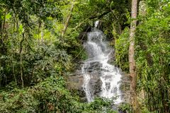 Waterfall in green jungle tropical forest Royalty Free Stock Images