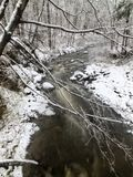 Snowy forest stream Stock Images