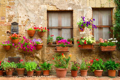 Beautiful street decorated with flowers in Italy. Tuscany Royalty Free Stock Photo