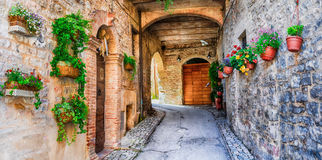 Beautiful street decoration with flowers in medieval town Spello (Umbria, Italy). DEcoration Old Streets Italian,Spello,Umbria stock photo