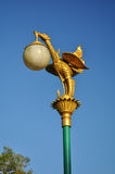 Beautiful  street lamp. Street lamps in Thailand are the golden swan Stock Images
