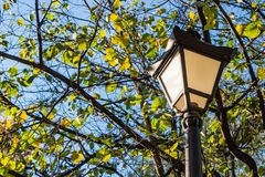 A beautiful street lighting lantern is among the trees with green and yellow leaves on the blue sky background in the park in autu. Mn we see in the photo stock image