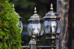 Beautiful street lights made of glass next to a pine tree. royalty free stock image