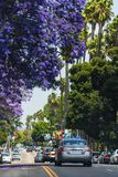 Beautiful street in Los Angeles Stock Photos