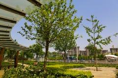 Beautiful street park Royalty Free Stock Photo