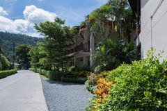 The beautiful street with tropical plants  in sunny day. Thailand stock photos
