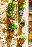 Beautiful street in Valldemossa with traditional flower decoration, famous old mediterranean village of Majorca. Balearic island Mallorca, Spain Royalty Free Stock Photo