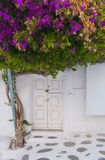 Beautiful streets of  Mykonos , Greece Royalty Free Stock Images