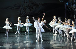 A beautiful stretch of the Swan Dance-ballet Swan Lake Stock Photos
