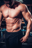 Beautiful and strong young muscular guy Stock Photography