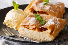 Beautiful strudel with cottage cheese, with vanilla ice cream cl Stock Photos