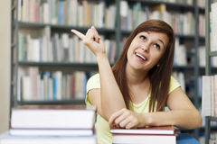 Beautiful student girl Stock Photography