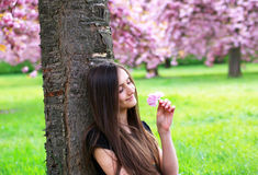 Beautiful student girl Royalty Free Stock Photography