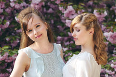 Beautiful stylish girls Royalty Free Stock Images