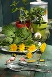 Beautiful , stylish herbal table Stock Photography