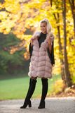 Beautiful stylish woman pose in park in early autumn royalty free stock photo