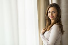 Beautiful and successful brunette  posing in front of a window Royalty Free Stock Photos
