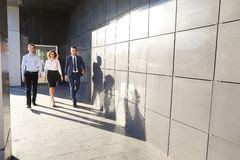 Beautiful successful people, two guys and girl, young businessme royalty free stock photography