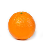 Beautiful succulent orange stock photo