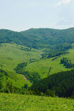 Beautiful summer alpine landscape with wooded mountains Stock Photography