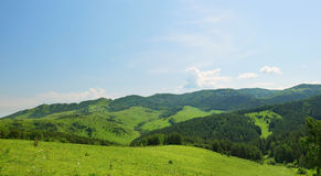 Beautiful summer alpine panorama with green wooded hills Stock Images