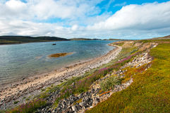 Beautiful summer arctic landscape with bay. Barents Sea Stock Images
