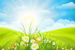 Beautiful summer background Royalty Free Stock Images