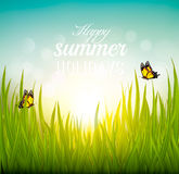 Beautiful summer background with grass and butterflies. Stock Photo