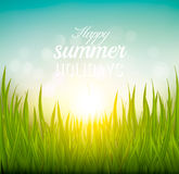Beautiful summer background with grass and sun. Stock Photography