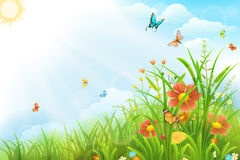 Beautiful summer background Royalty Free Stock Photos