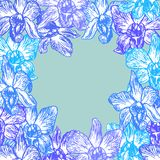 Beautiful Summer background Orchid Hand drawn round card blue contour sketch, Place for your text, congratulations banner design. Vector illustration Stock Photo