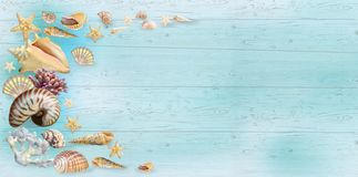 Banner Shells Blue Wood Background Stock Images