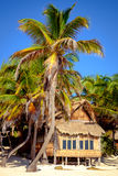 Beautiful summer beach landscape with wooden cabin and palm tree. S, Tulum, Mexico Royalty Free Stock Image